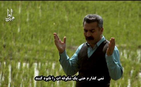 موسیقی محلی گروه ترانه با صدای  «محمدابراهیم عالمی»