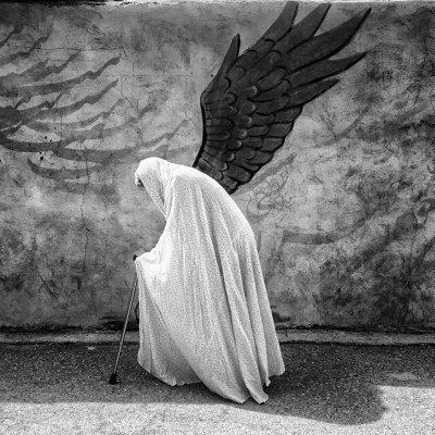 درخشش عکاسان ایرانی در جشنواره بینالمللی